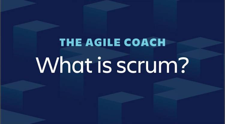 Agile Vs Scrum: Know the Difference